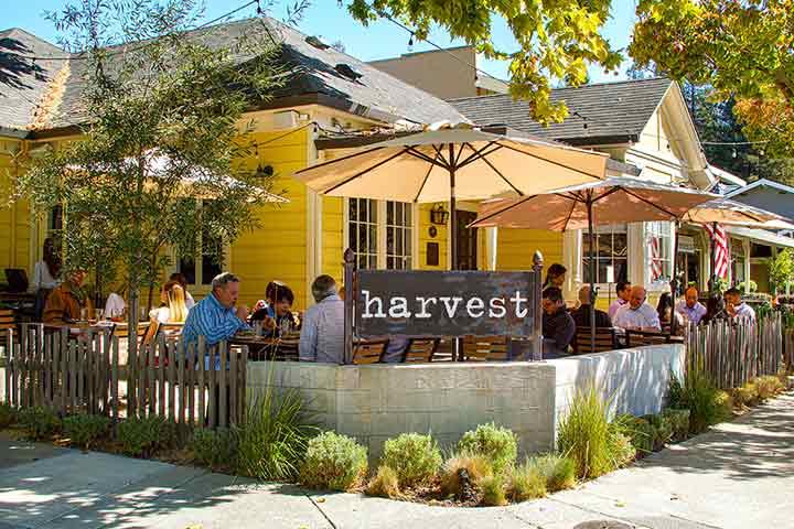 Danville Harvest